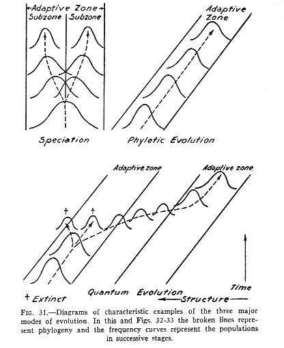 Part 2 Introducing Cladograms